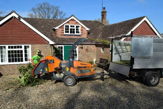 Domestic Tree Services Sussex