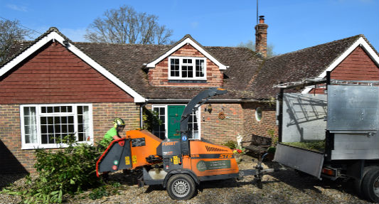 Domestic Tree Services Video Image Sussex