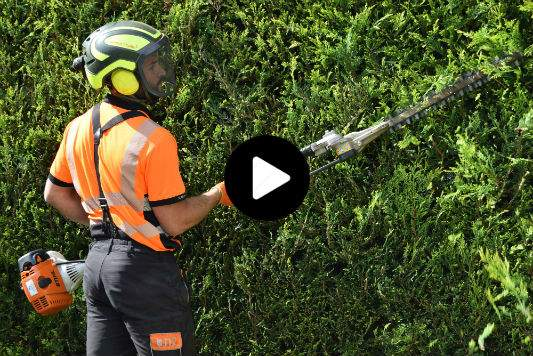 Hedge Maintenance Horsham
