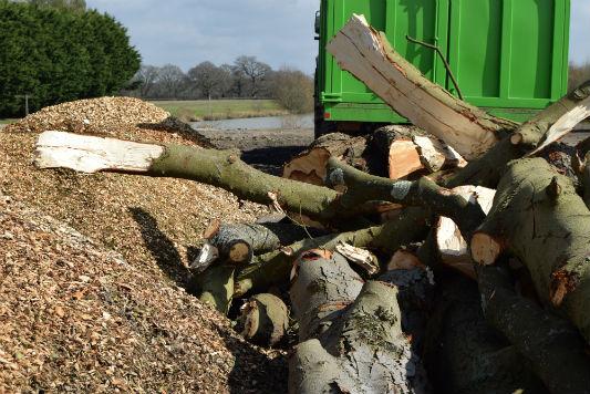 Tree waste removal Horsham