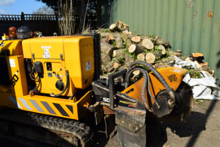 Stump Grinding in Farnham