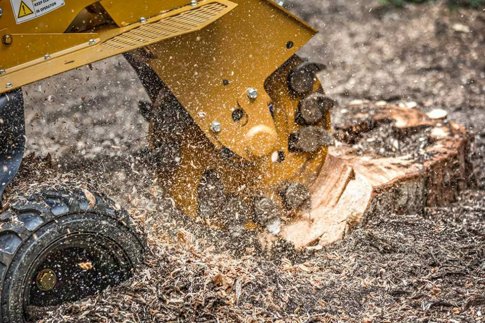 HTC - Stump Removal Services Sussex