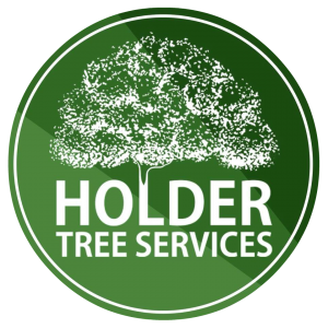 Holder Tree Services