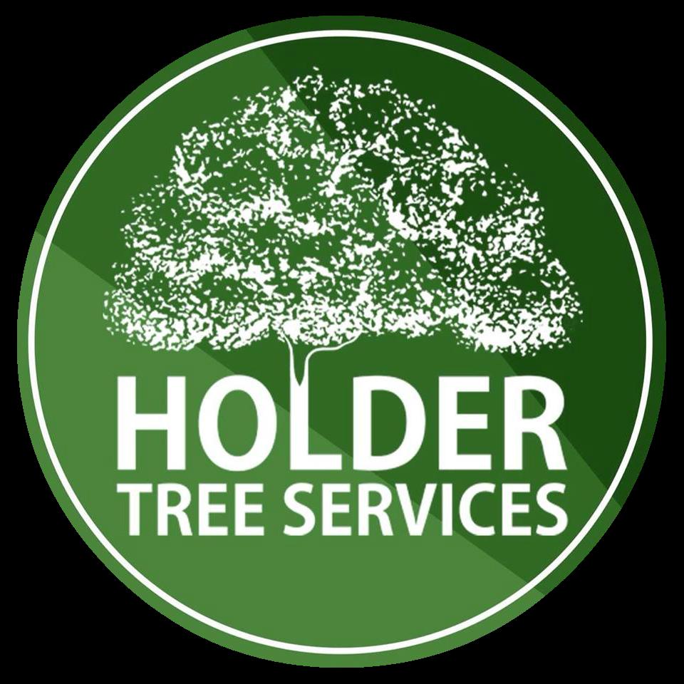 Holder Tree Services Tree Surgeons