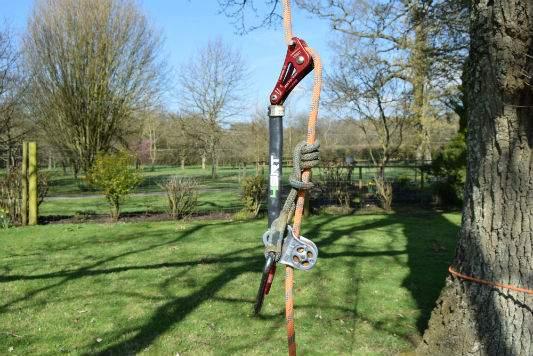 Holder-Tree-Services-Kit-Brighton