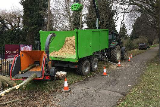 Holder-Tree-Services-Kit-Burgess-Hill
