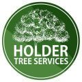 Holder-Tree-Services-Tree-Surgeons-Sussex-Logo