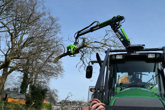 Forestry Tree Services - Holder Tree Services