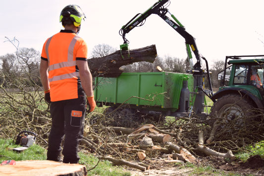 Site Clearance Sussex